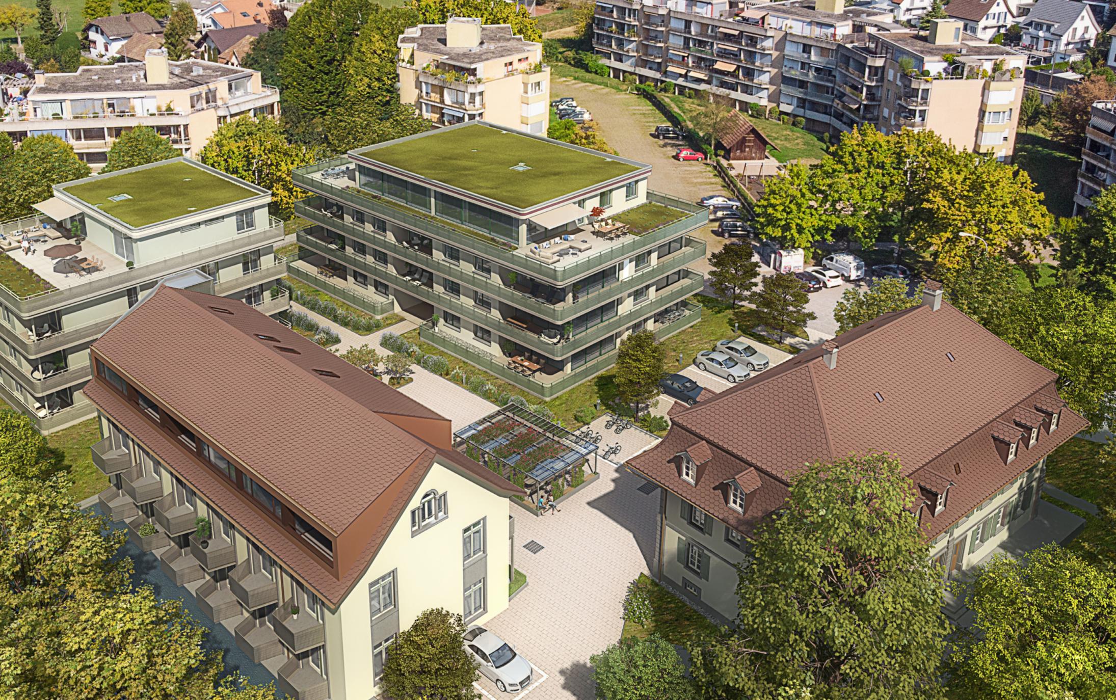 Neubau 2 MFH & Umbau Villa «Am Tych» Oftringen